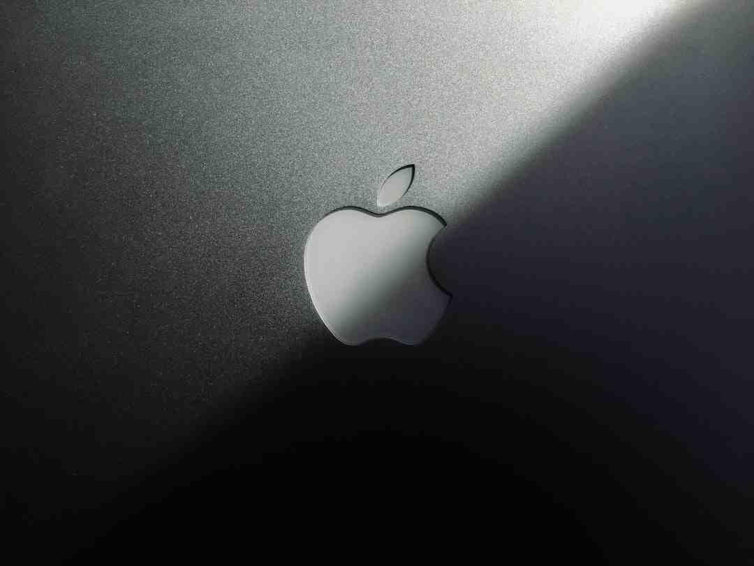 Quel logiciel Adobe pour logo ?